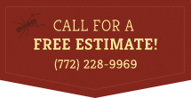 Call Us For A Free Estimate! 772-228-9969
